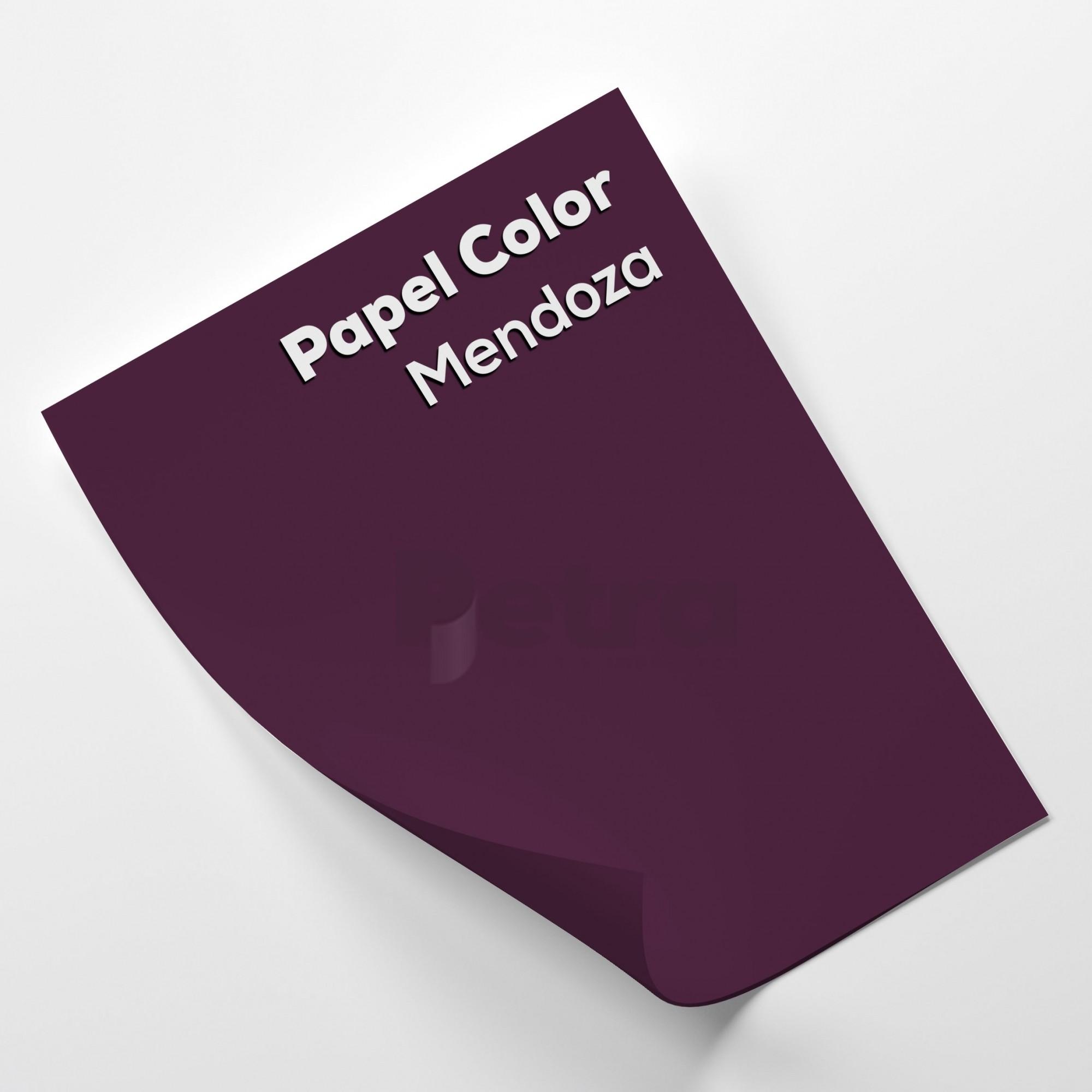 Papel Color Plus Mendoza - Roxo tam. 32x65cm 180g/m² 50 Folhas