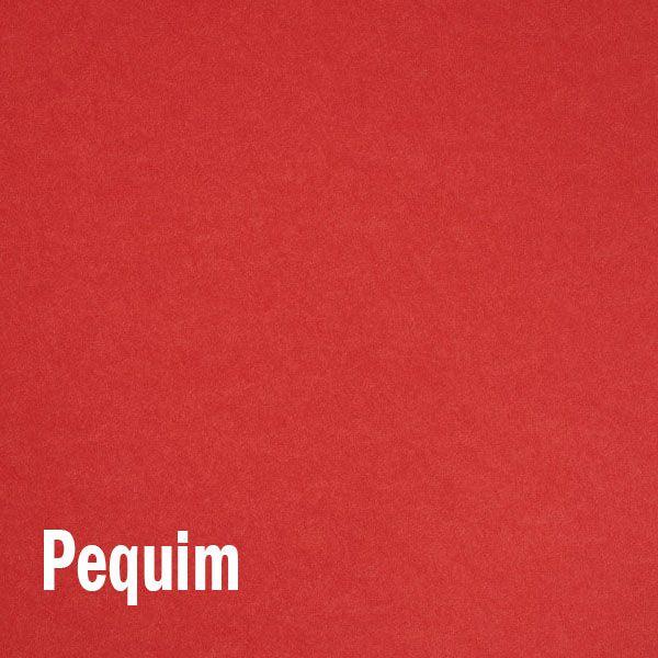 Papel Color Plus Pequim - Vermelho Tam. 66x96cm 180g/m² 10 Folhas