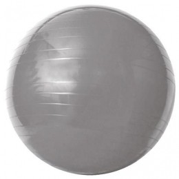Gym Ball - Acte - Cinza 75Cm