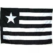 Bandeira 2 Panos Botafogo - Myflag