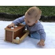 Montessori Bola de Empurrar