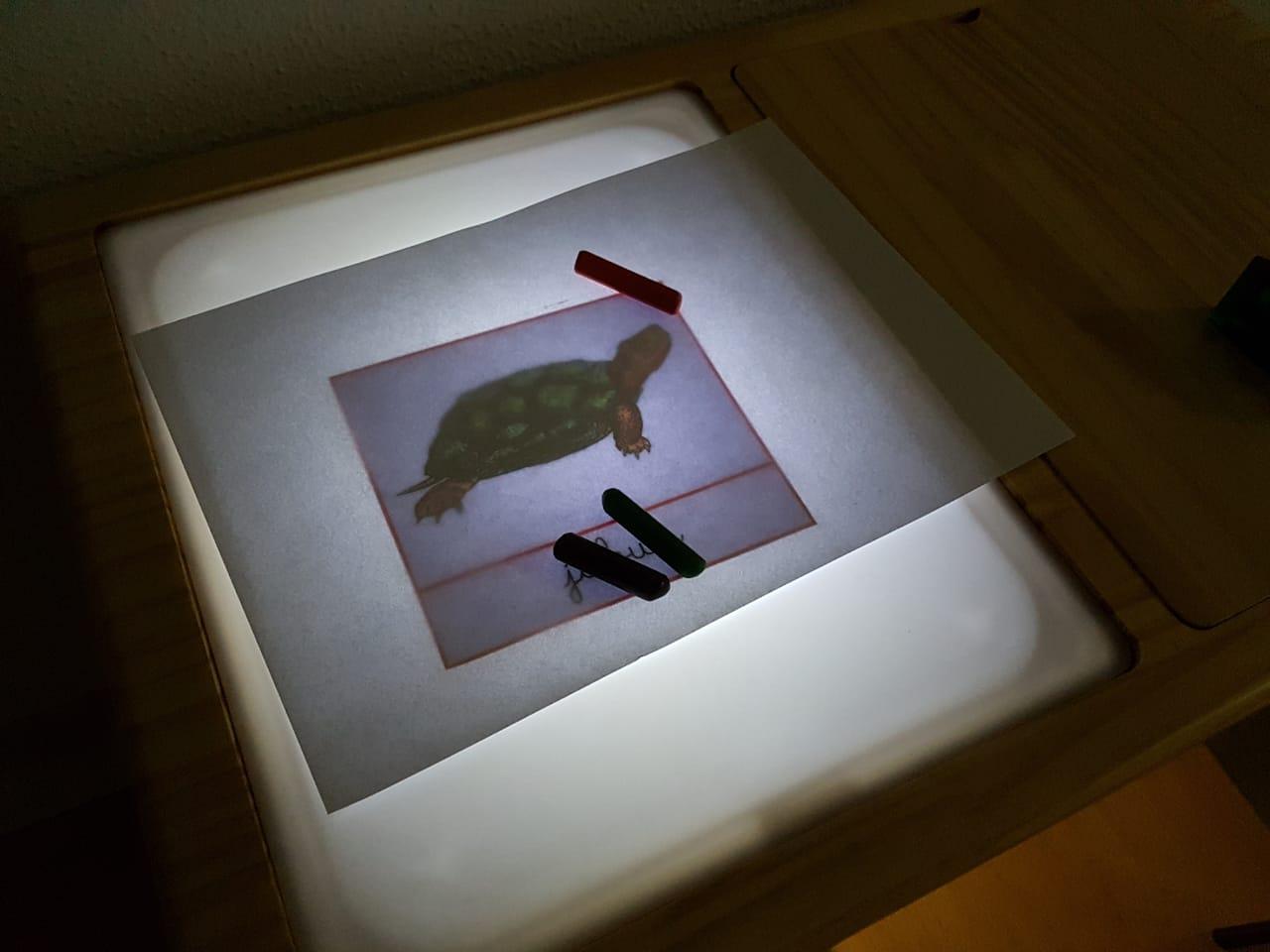 Mesa Sensorial com Luz