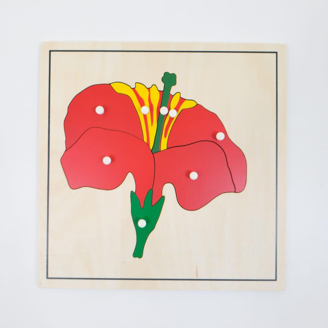 Quebra Cabeça Flor Botânica Montessori