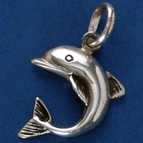 Pingente de Golfinho - 9556