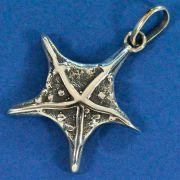 Pingente Estrela Mar Cheia - 95225