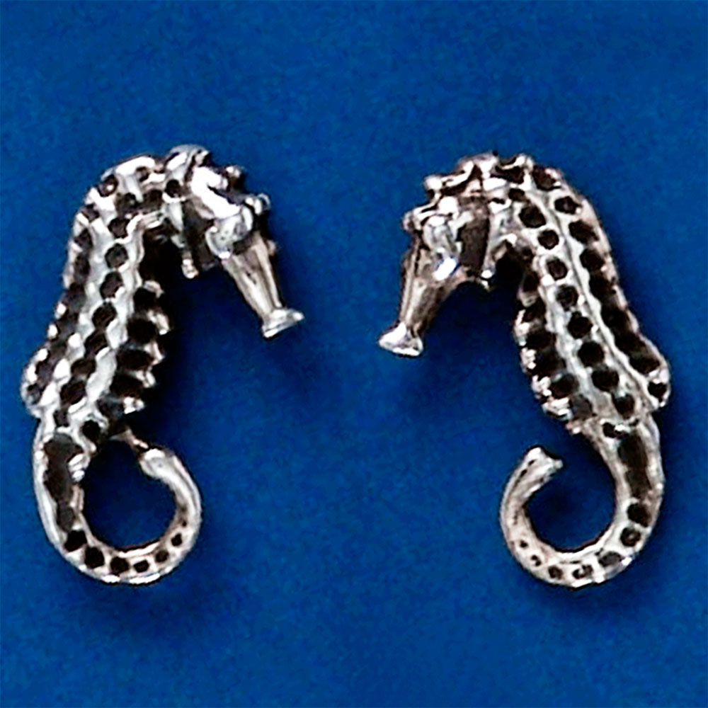 Brinco de Cavalo-marinho - 9449  - Arte Ativa