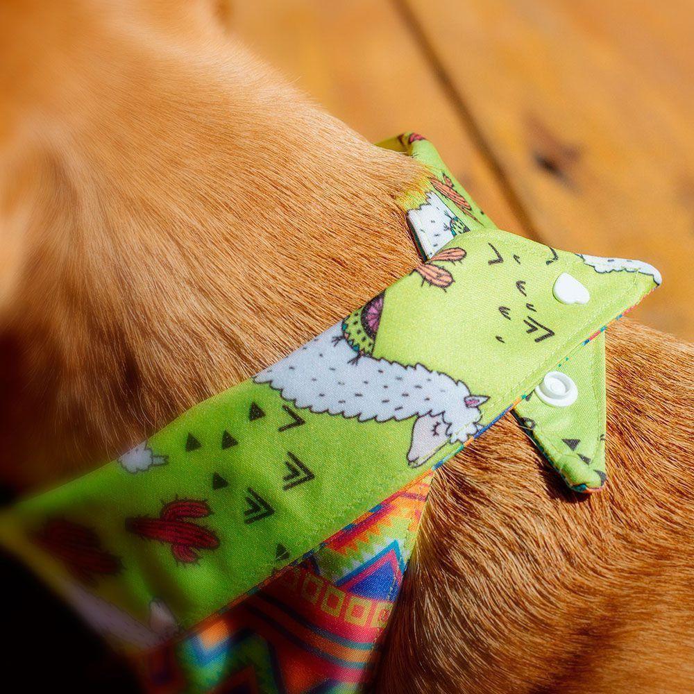 Bandana para cachorro Bo.be Poncho Xadrez Verde