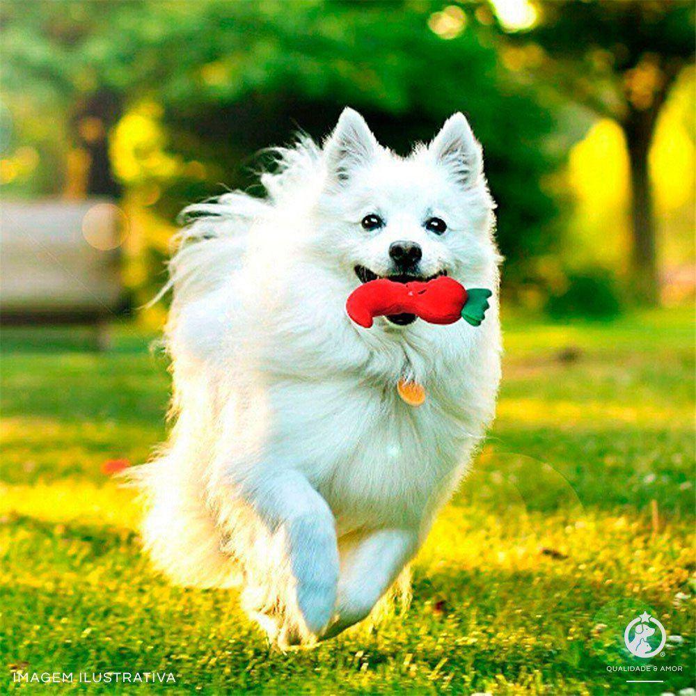 Brinquedo para Pet em Pelúcia - Maçã