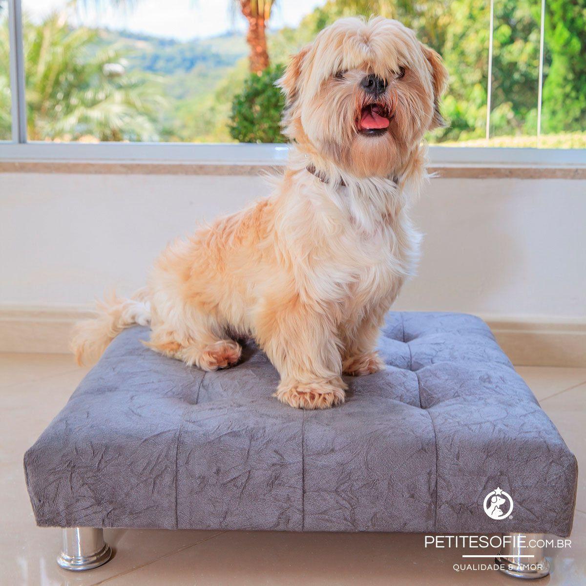 Cama Modernpet Couch Suspensa