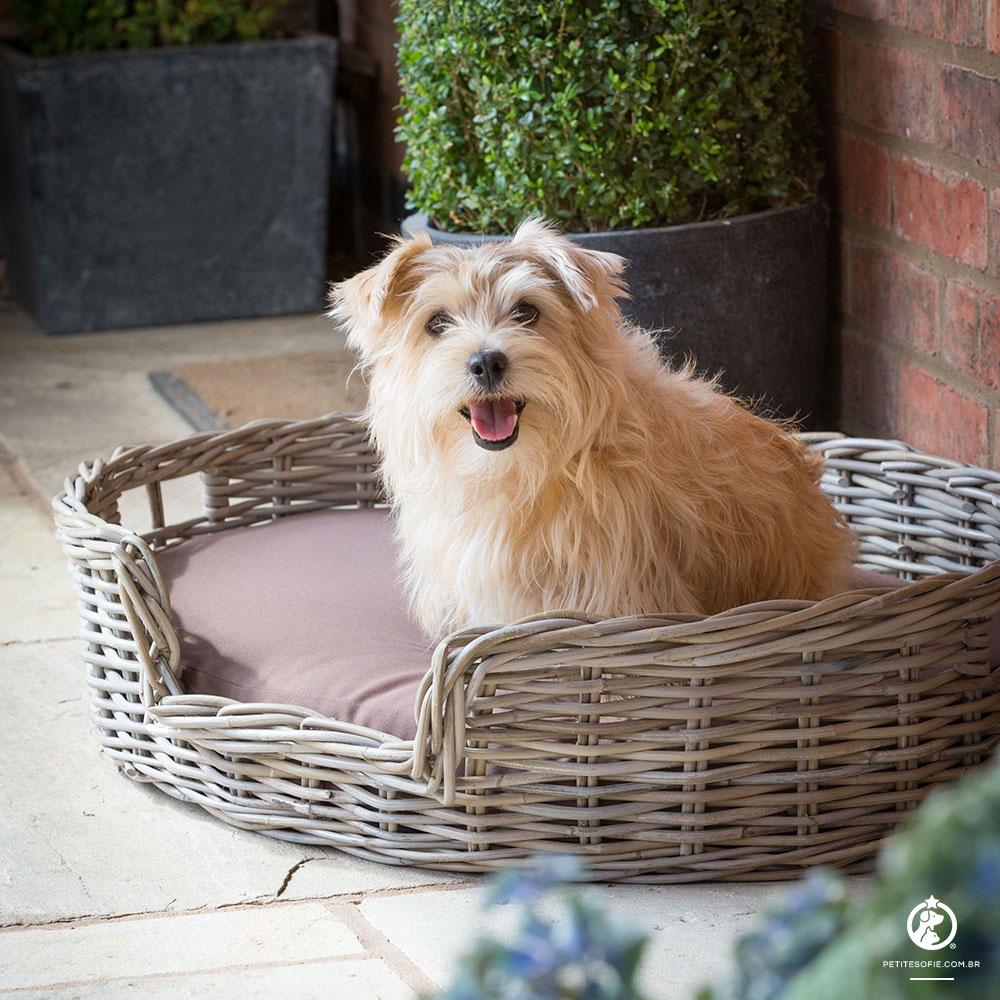 Cama Pet Artesanal de Luxo Chaise Boomer