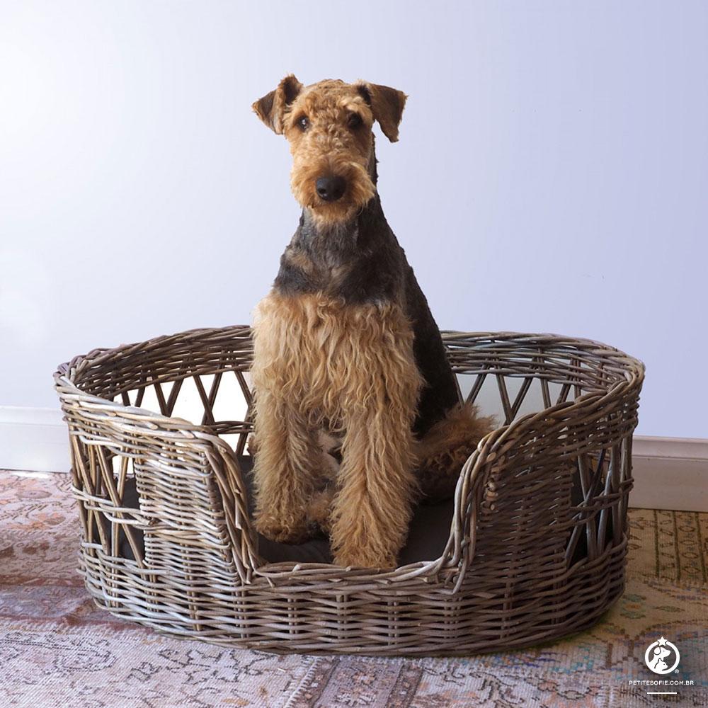 Cama Pet Artesanal de Luxo Chaise Charlie