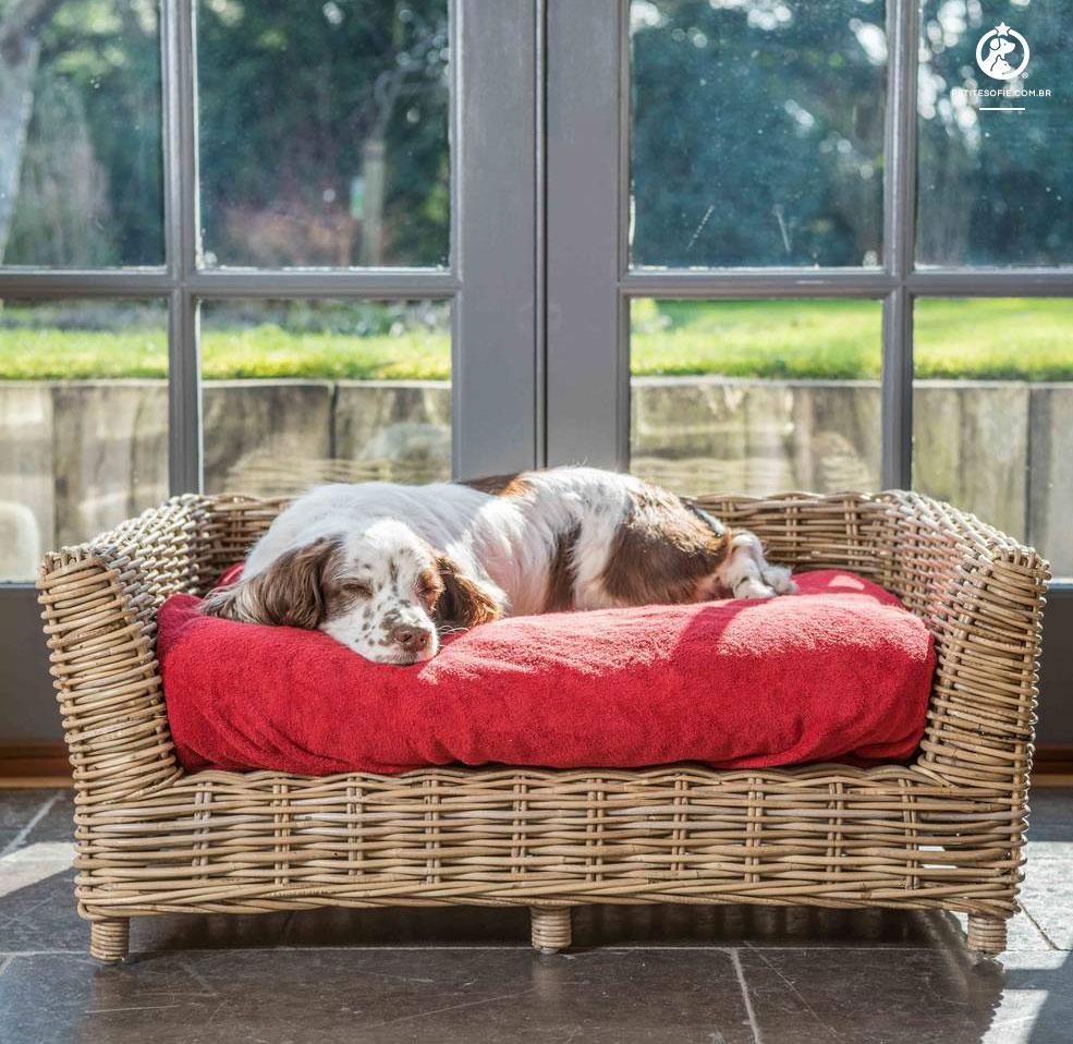 Cama Pet Artesanal de Luxo Chaise Ruffus