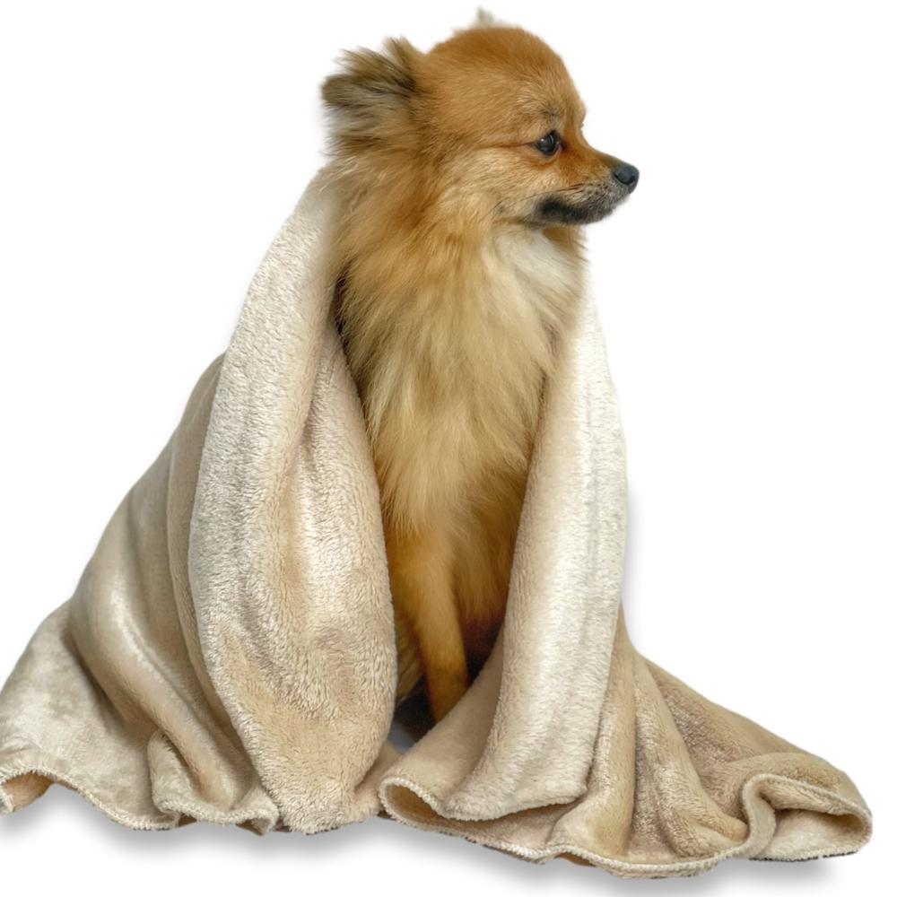 Cobertor pet em Microfibra para Sofá Tomtom