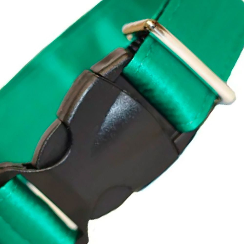Coleira Modernpet em Nylon Verde