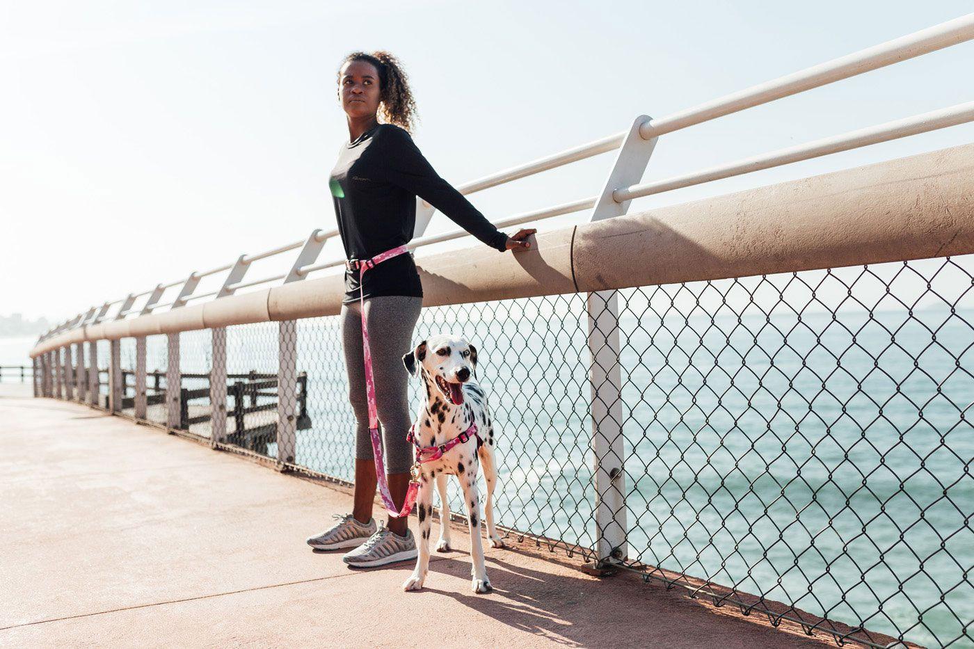 Guia Running Cinza para correr com cães: Linha Educativa Pro Cleber Santos®