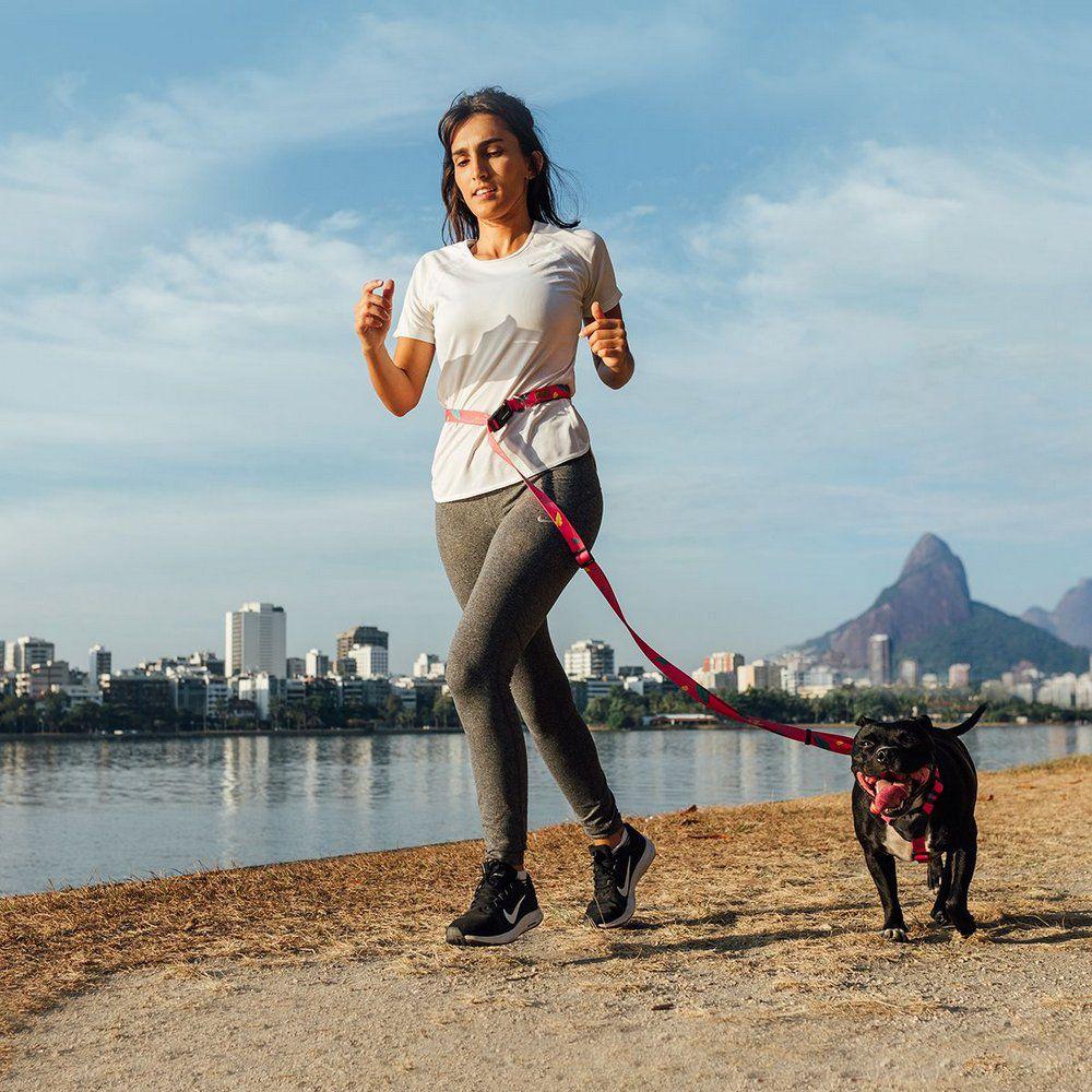 Guia Running Olivia para correr com cães