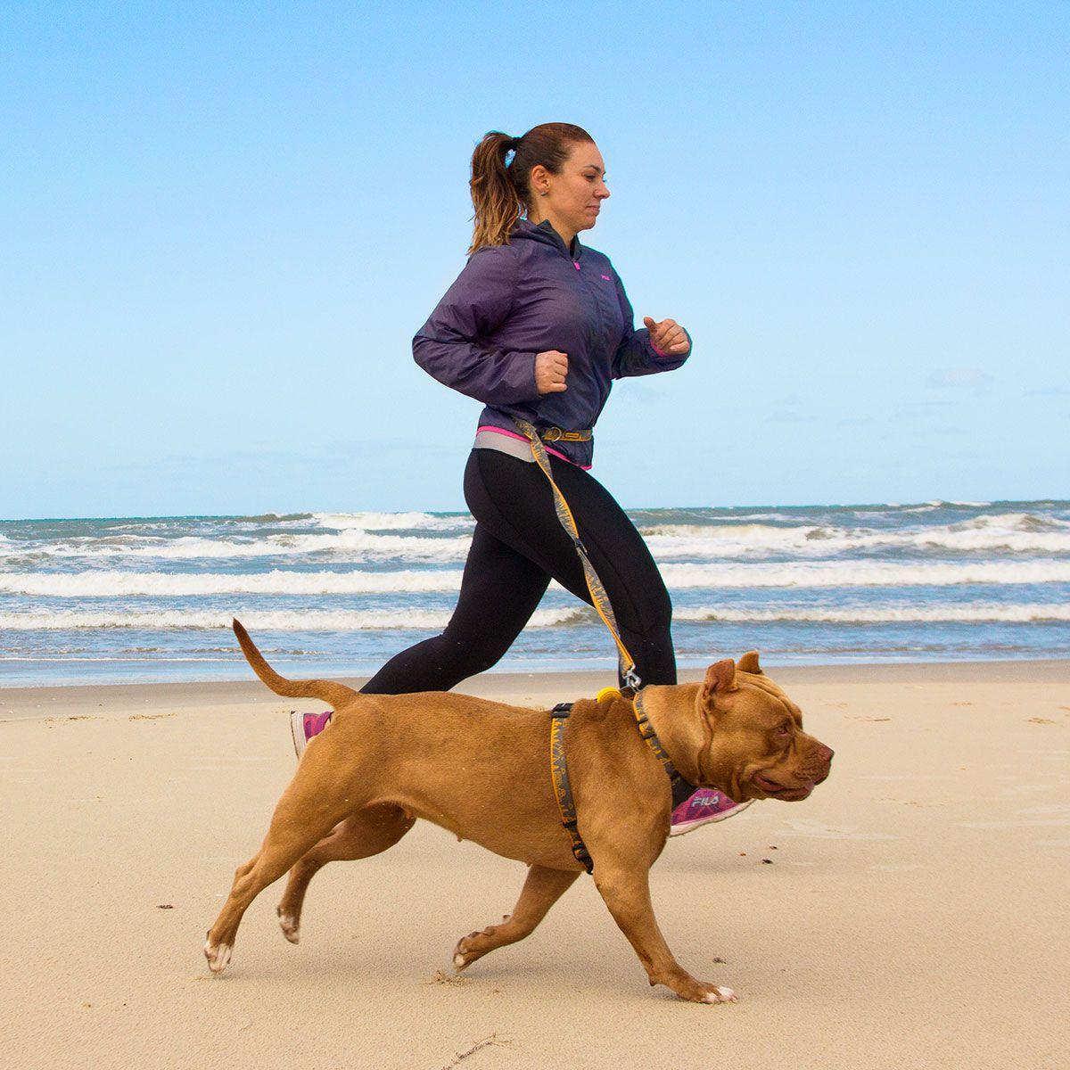 Guia Running Outdoor para correr com cães