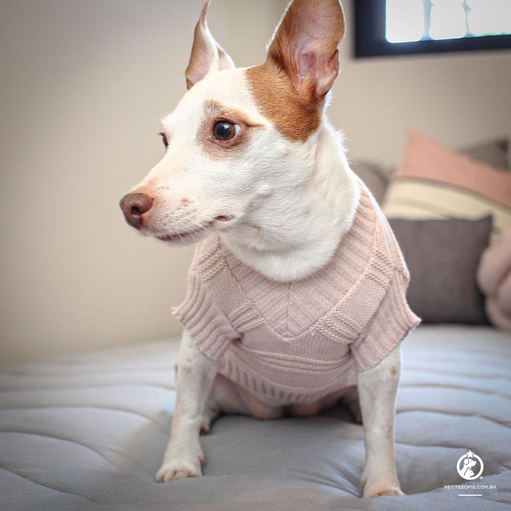 Roupa de Tricô Gola V para cachorro BeCute