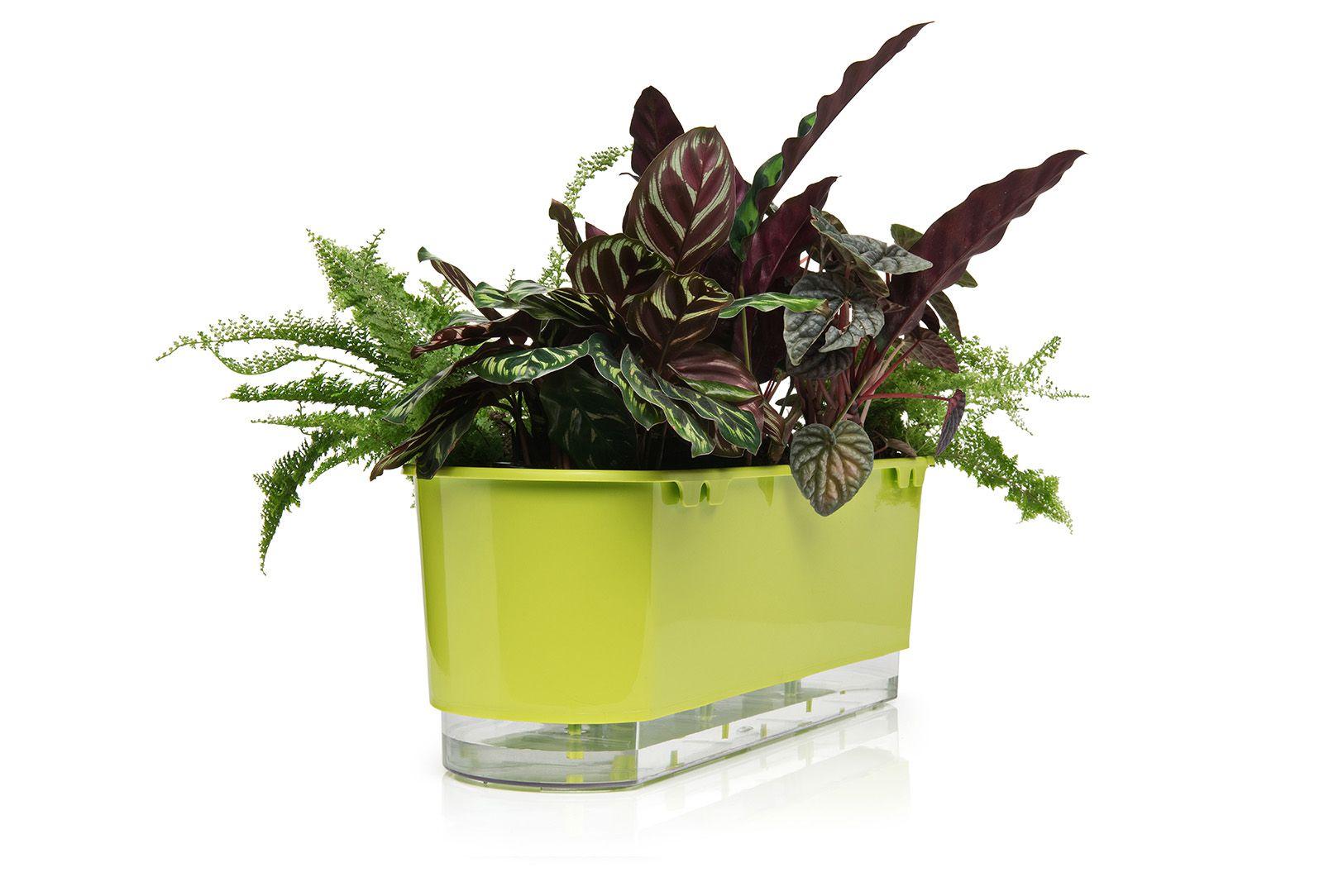 Jardineira Autoirrigável  Verde Claro Raiz