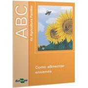 ABC da Agricultura Familiar - Como Alimentar Enxames