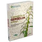 Agronegócio do Gergelim no Brasil, O