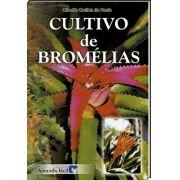 Cultivo de Bromélias