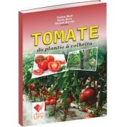 Tomate do Plantio a Colheita