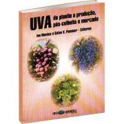 UVA - Do Plantio a Produção, Pós Colheita e Mercado
