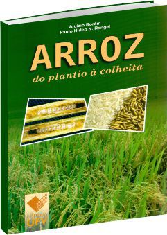 Arroz do Plantio à Colheita