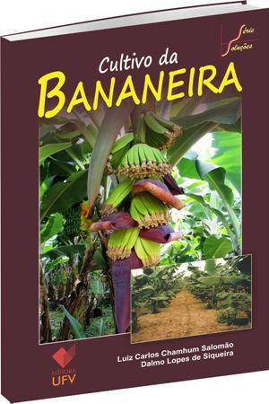 Cultivo da bananeira