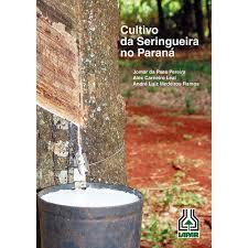 Cultivo da Seringueira no Paraná