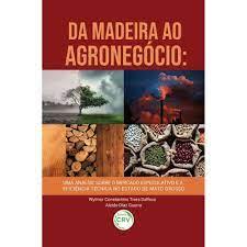 DA MADEIRA AO AGRONEGÓCIO: uma Análise Sobre o Mercado Especulativo e a Eficiência Técnica no Estado de Mato Grosso