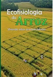 Ecofisiologia do Arroz, Visando altas produtividades