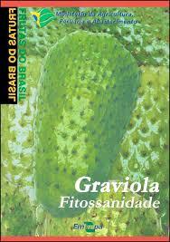 Frutas do Brasil - Graviola Fitossanidade