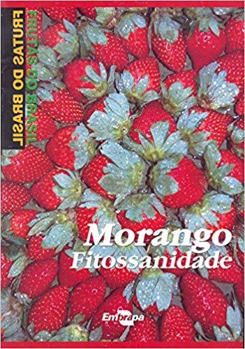 Frutas do Brasil - Morango Fitossanidade