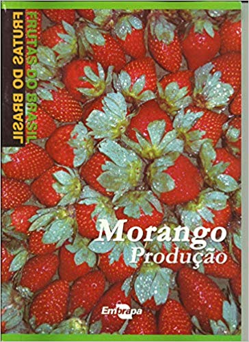 Frutas do Brasil - Morango Produção