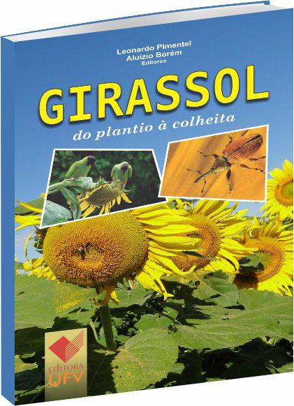 Girassol do Plantio à Colheita