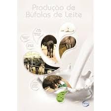 Produção de Búfalas de Leite