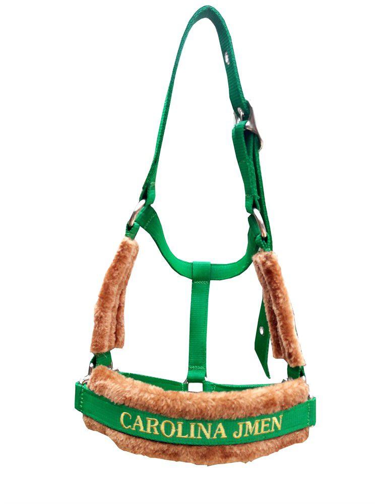 Cabresto Personalizado Luxo (Verde Bandeira )