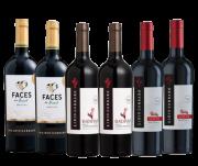 Combo Vinhos Premium