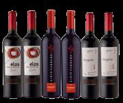 Combo Vinhos Top Premium