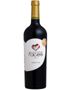 Lidio Carraro Faces do Brasil Merlot 2016 750ml