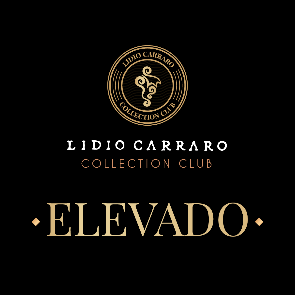 Collection Club - Elevado  - BOUTIQUE LIDIO CARRARO