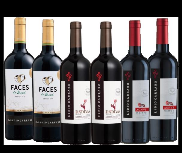 Combo Vinhos Premium  - Boutique Lidio Carraro