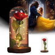 Cúpula Redoma Rosa Encantada A Bela e a Fera