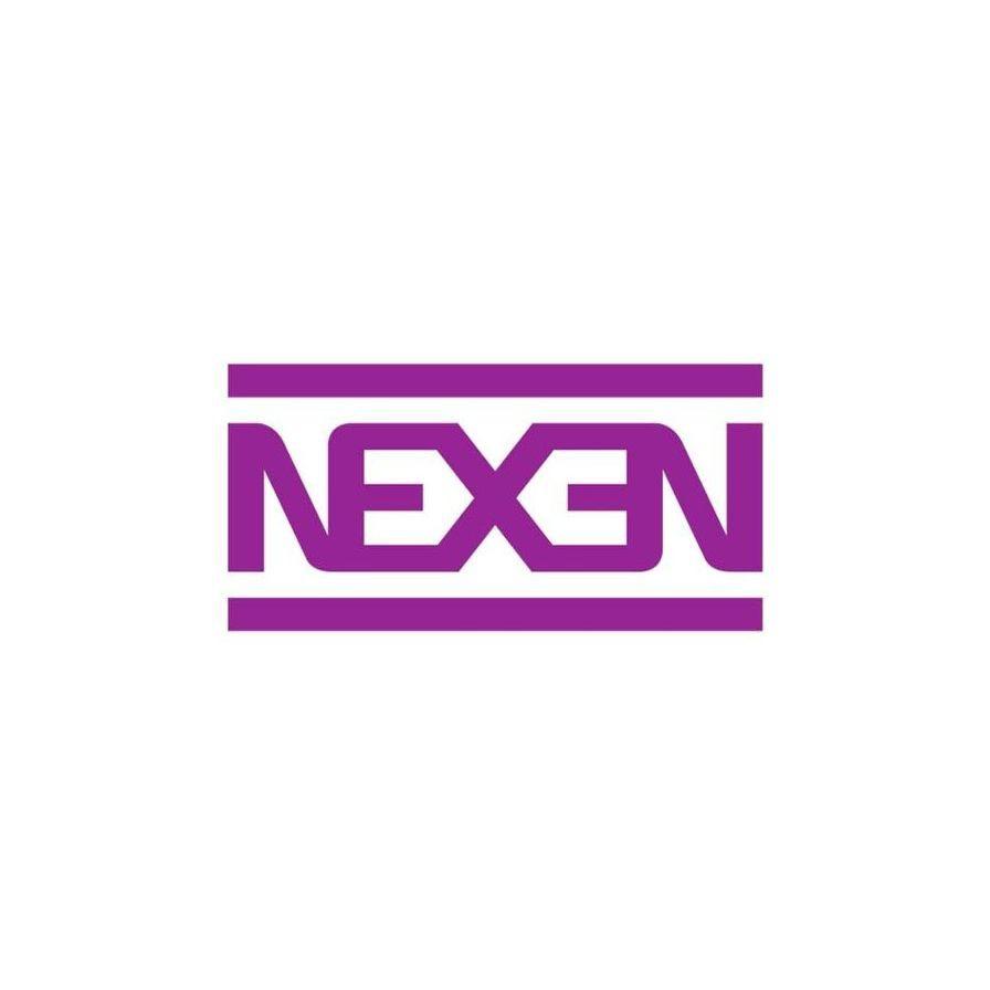Pneu Nexen Aro 16 195/55R16 NBlue Eco SH01 91V XL