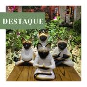 Escultura Gatos Ioga - Diversas Posições ( 20cm )
