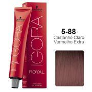 Igora Royal 5-88 Castanho Claro Vermelho Extra