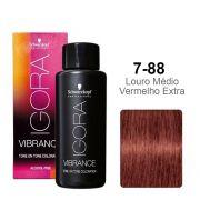 Igora Vibrance 7-88 Louro Médio Vermelho Extra