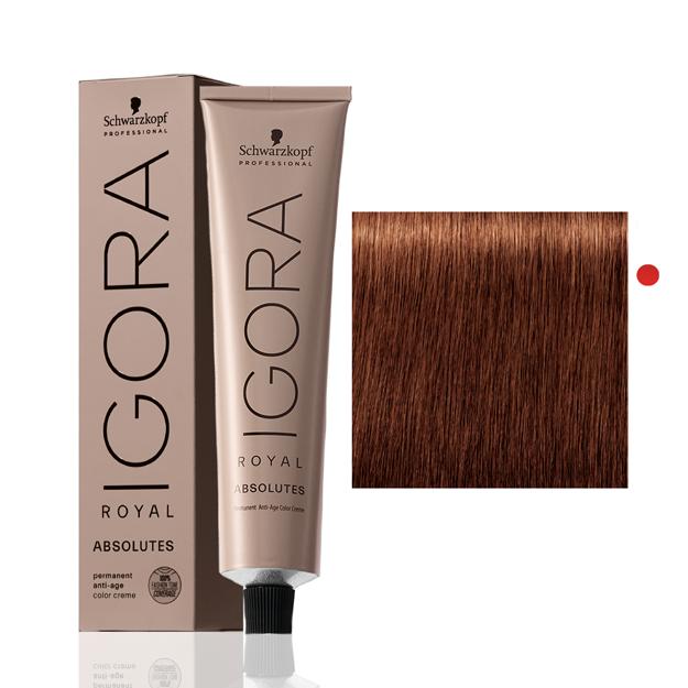 Igora Royal Absolutes 6-70 Louro Escuro Cobre Natural